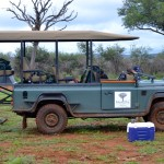 Safari Land Rovers at Madikwe Game Reserve