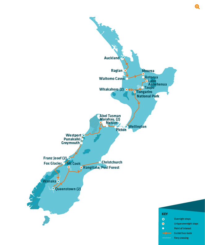 Stray New Zealand Short Moe Pass from Auckland to Christchurch